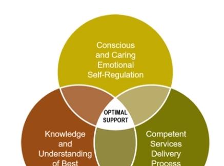 Conscious Care & Support (CCS) - TrainingBrunch & Learn - Positive Holistic Behaviour Support